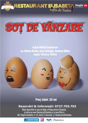 Web_Afis_Sot_De_Vanzare