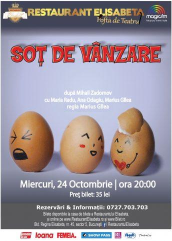 afis-editabil-sot-de-vanzare-50x70
