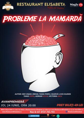 Web_Afis_Probleme_La_Mansarda_-V3