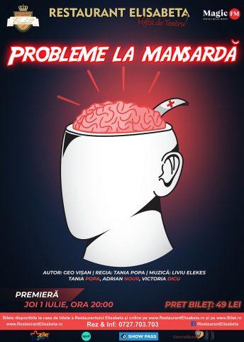 Afis_Probleme_La_Mansarda_50x70CM_V3
